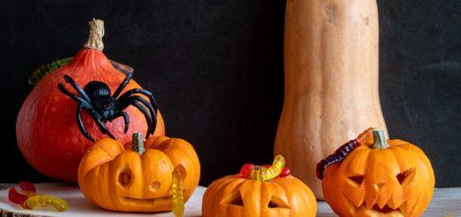 Halloween : Pourquoi faire des jeux de chasses aux bonbons ?